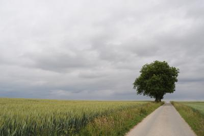 /galleries/ausstellungen/2013/2013-Horizonte/D5000_2011-06-13_185657.thumbnail.JPG